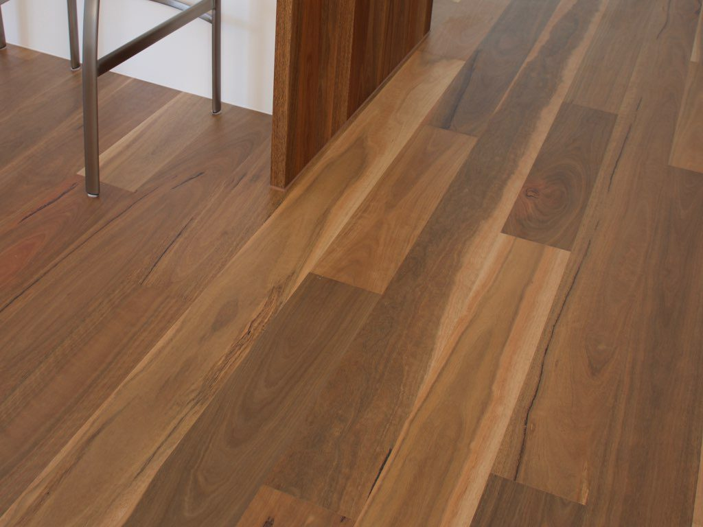 Product Gallery Australian Native Spotted Gum 1