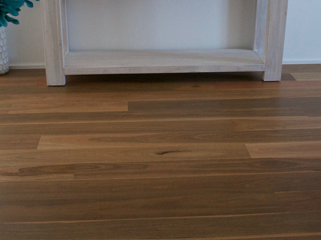 Product Gallery Australian Native Spotted Gum 2