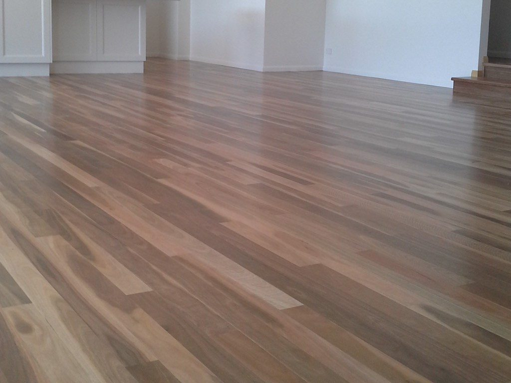 Product Gallery Spotted Gum 3